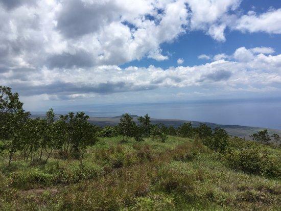 Big island of hawaii volcano national park foto di for Lucernari di hawaii llc