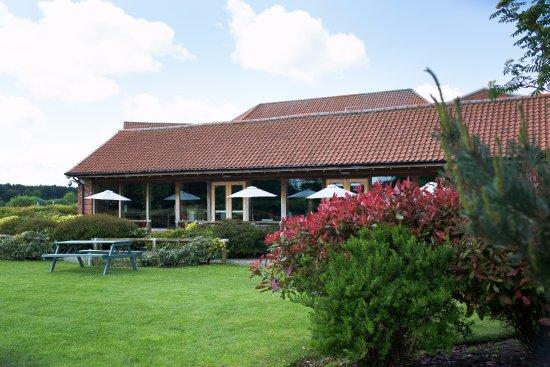 Flaxton, UK: Tykes Garden