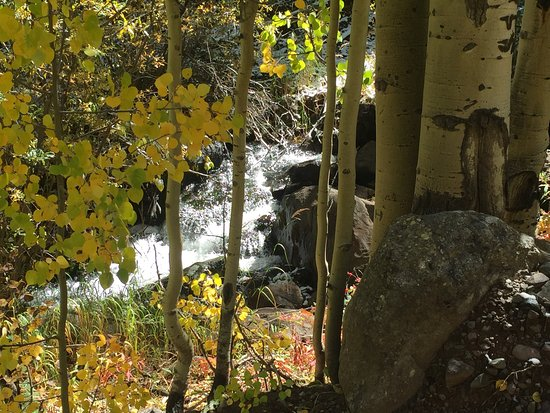 San Isabel National Forest: photo5.jpg