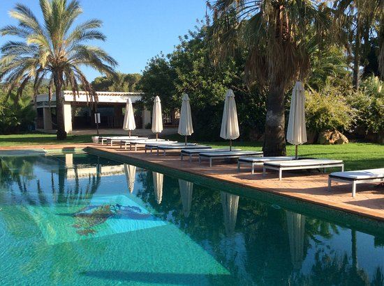 Agroturismo Can Gall: Great pool in private quiet ga rdens