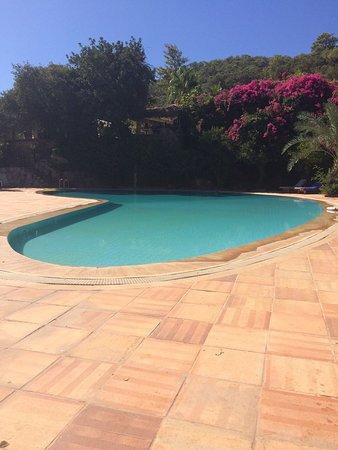 Paradise Garden Hotel: My short stay