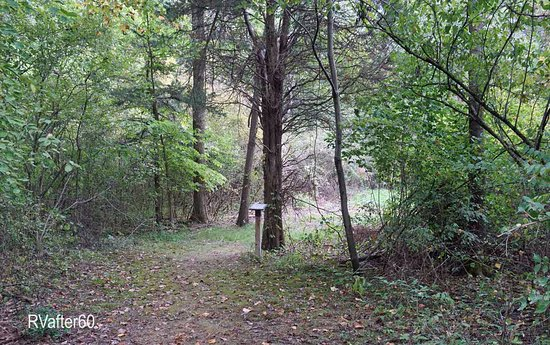 Saint Marys, OH: A mile-long wooded nature-walk runs through the park.