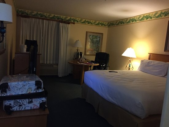 Holiday Inn Express Hotel and Suites Orlando-Lake Buena Vista South: photo2.jpg