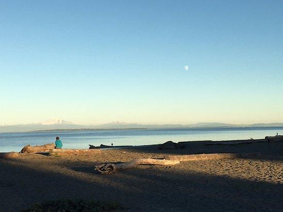 Centennial Beach: Ocean view #2