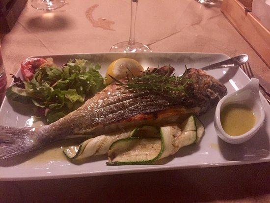 Damnoni Taverna : Girit adasında Damnoniye giderseniz eğer,mutlaka bu şirin ve leziz restorana uğrayın! İster et,