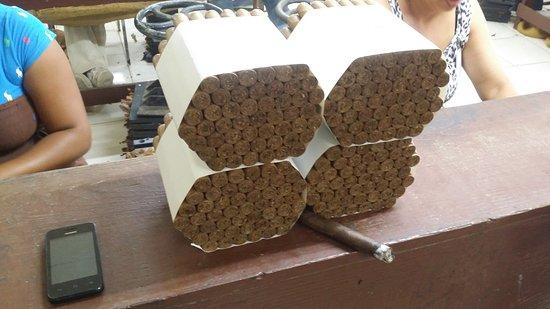 Cabarete, République dominicaine : cigars