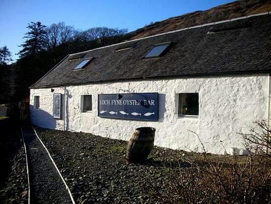 Clachan, UK: Loch Fyne Oyster Bar Cairndow
