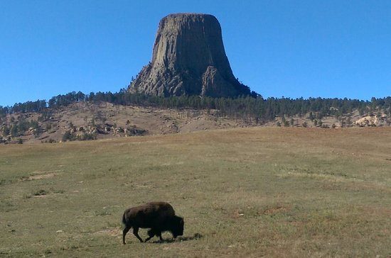 Elk Ridge Bed & Breakfast: Devil's Tower