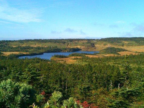 Hachimandaira Promenade Peak: 源太森の上から八幡沼を見る