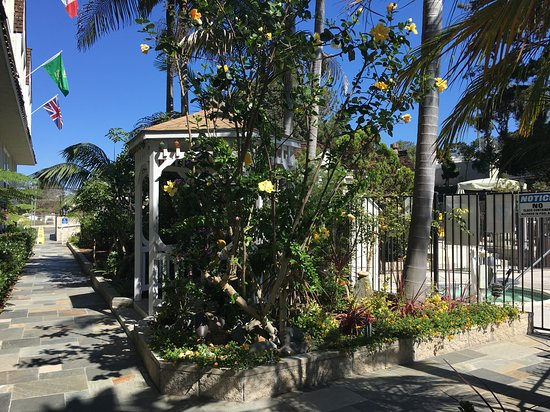 Best Western Premier Hotel Del Mar: Garden