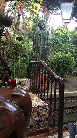 Casa de Las Flores: photo2.jpg