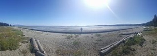 Cox Bay Beach Resort : photo2.jpg