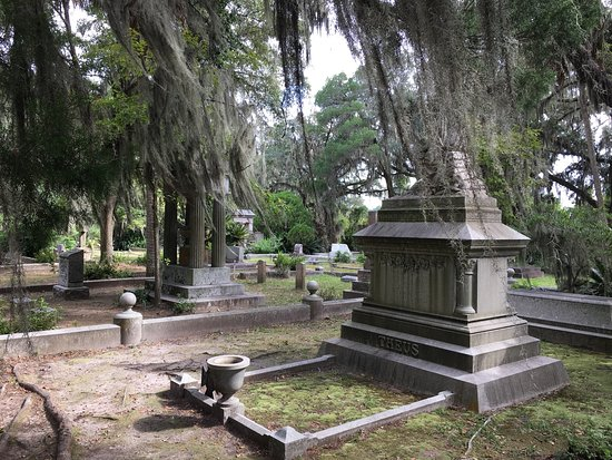 Bonaventure Cemetery Journeys w/ Shannon Scott