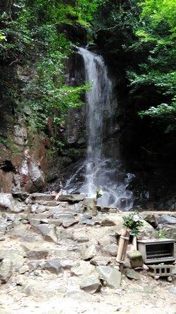 Tenri, اليابان: 桃尾の滝