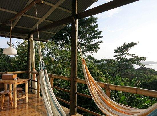 La Loma Jungle Lodge and Chocolate Farm 이미지