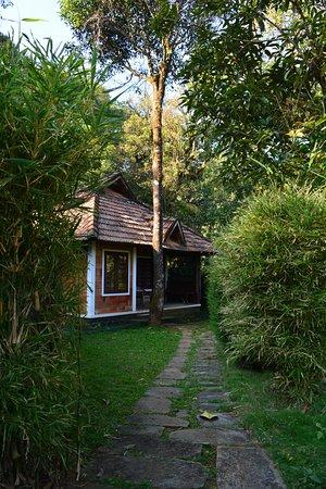 vernacular cottage picture of misty woods kakkabe tripadvisor rh tripadvisor co uk