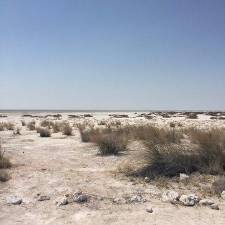 gravel plains and the pan at Etosha National Park