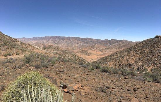 Richtersveld Transfrontier National Park, Sør-Afrika: photo0.jpg