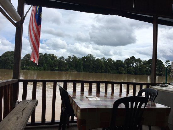 Sukau, Malasia: View from the little cafe!