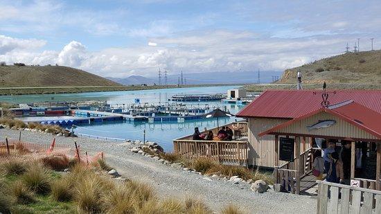 Twizel, Neuseeland: Salmon Farm