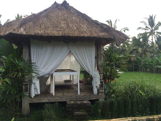 Hati Padi Cottages: Massage Time