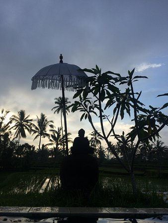Hati Padi Cottages Foto