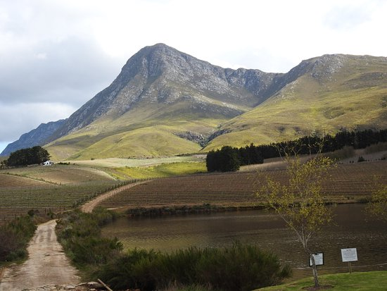 Creation Wines: Restaurant with a view!
