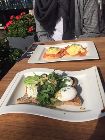 poached eggs cottage cheese and avocado on gluten free bread