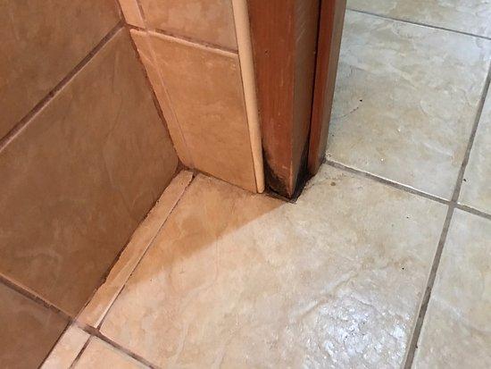 Anchorage Beach Resort: Dirty floor tiles and rotten door jam