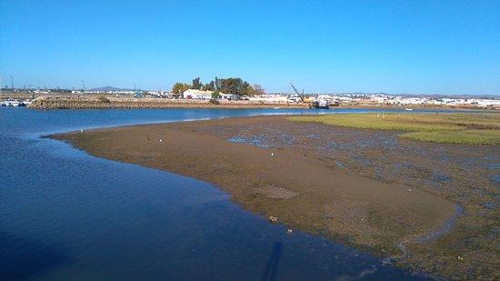 Praia da Terra Estreita Foto