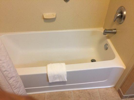Hampton Inn Leesburg - Tavares : Clean tub with modern fixtures
