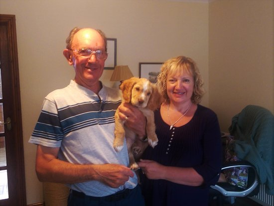 Camelford, UK: Roger and Roz (and Willow the new addition).