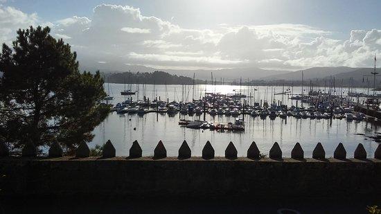 Pinzon: marina you overlook from hotel