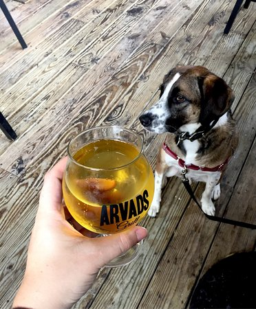 Arvads: Dog friendly covered patio with Milo!