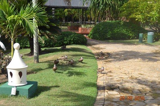 Tropical Princess Beach Resort & Spa Photo