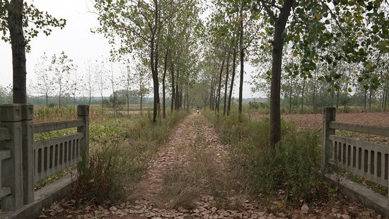 Xinyi, Kina: Scenery around the school
