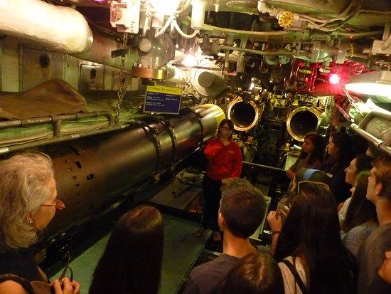 USS Requin : Sala de torpedos de proa