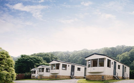 Oxwich, UK: Static Holiday Homes