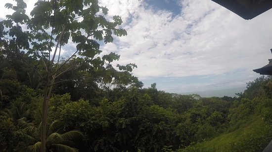 TikiVillas Rainforest Lodge: Nice views from all rooms
