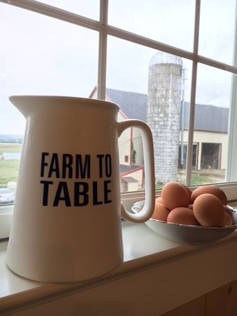 Gordonville, Pensilvania: Fresh milk and eggs