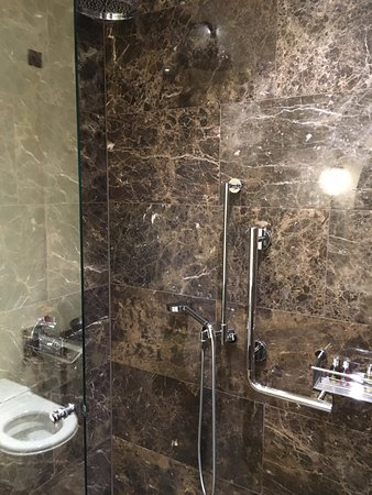 Hotel Lamée: Good shower