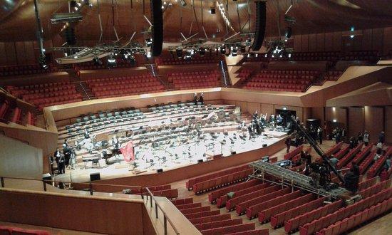 Sala santa cecilia foto di auditorium parco della for Auditorium parco della musica sala santa cecilia
