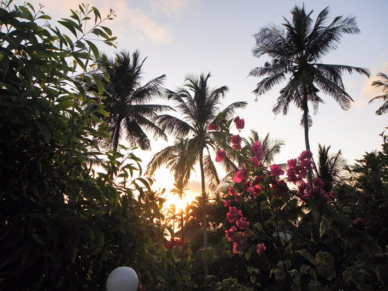 Landscape - Picture of African Sun Sand Sea Resort & Spa, Zanzibar Island - Tripadvisor