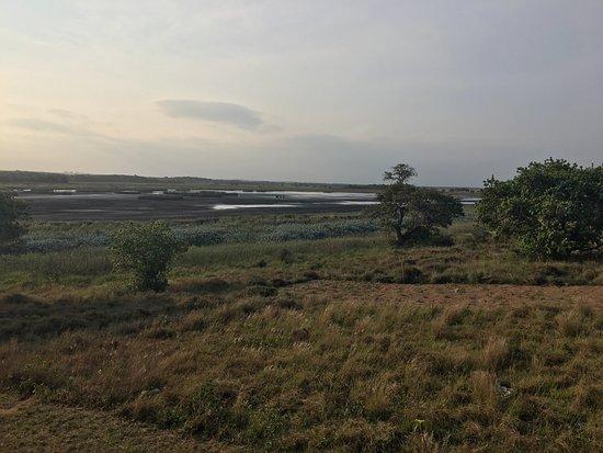 Ponta do Ouro, Moçambique: photo3.jpg