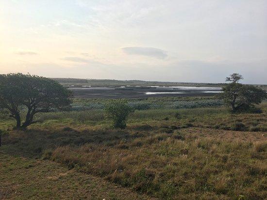 Ponta do Ouro, Moçambique: photo4.jpg