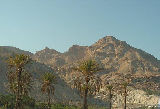 Photo of Caesar Resorts Deadsea Hotel Dead Sea Region