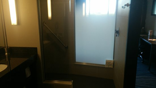 Larchwood, IA: Walk in shower, frosted glass from shower into room