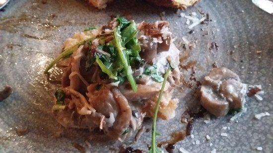 Gaerwen, UK: mushroom starter