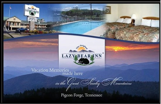 Lazy bear inn updated 2017 prices hotel reviews for Pigeon forge motor lodge pigeon forge tn