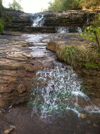 Carbondale, IL: Spillway- Magical Place to Explore!